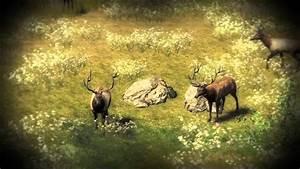 The Hunter Pc Game - 6 Bull Elk Group Hd 1080p