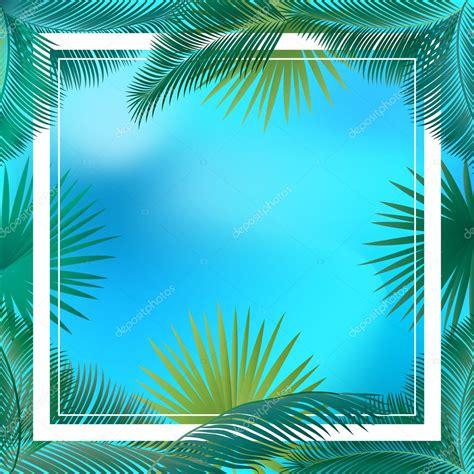 fondo  cartel verano hojas de palma  cielo fondo tropical cartel de vector de marco