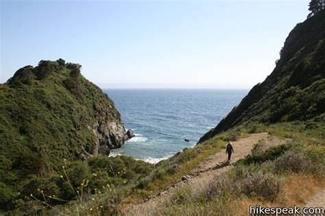 partington cove trail big sur hikespeakcom
