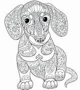 Coloring Dane Pages Printable Adult Mandala Dog Getdrawings Adults Puppy Animal Colouring Getcolorings sketch template