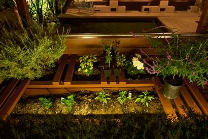 Raised Beds Garden Portable Build Th Practical