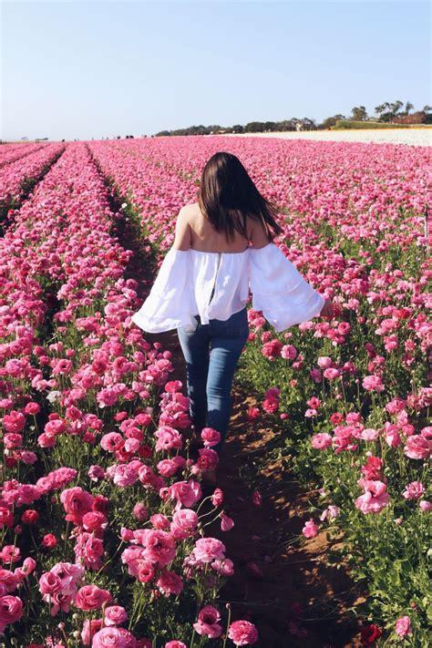 instagram worthy san diego spring  blooming