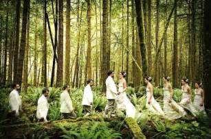 forest wedding plan it event ideas lord of the rings inspiration board