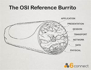 A Moment In Internet History  The Osi 7
