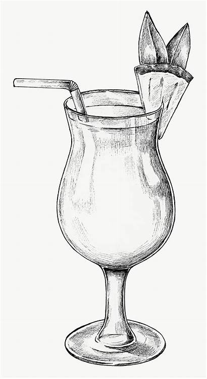 Drawing Glass Wine Cocktail Pineapple Drawings Hand