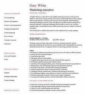 14 executive resume templates pdf doc free premium With executive cv examples