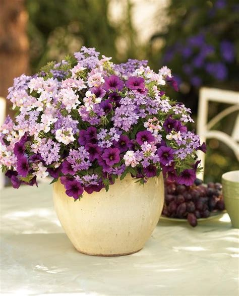 container recipes 104 best container garden recipes images on pinterest container garden potted plants and