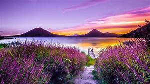 Beautiful, Yellow, Purple, Sky, Above, River, And, Closeup, View