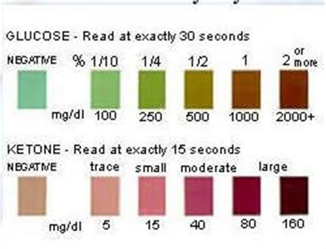 urine testing stix diabetes  pets fandom powered