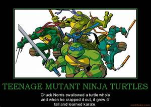 Ninja Turtle Qu... Tmnt Ninja Quotes