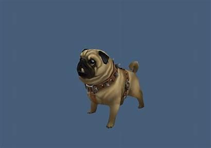 3d Dog Pug Max 3ds Object Cadnav