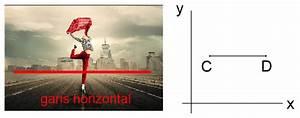 Garis Vertikal Dan Garis Horizontal Beserta Contohnya