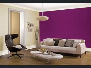 Photo Peinture Salon : cr er une d co chic avec sa peinture salon deco cool ~ Melissatoandfro.com Idées de Décoration