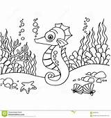 Seahorse Coloring Outline Vector Template Mr Neo sketch template
