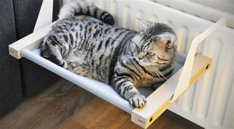 cat hammock bed woozy is the cat hammock that lets you hang on the