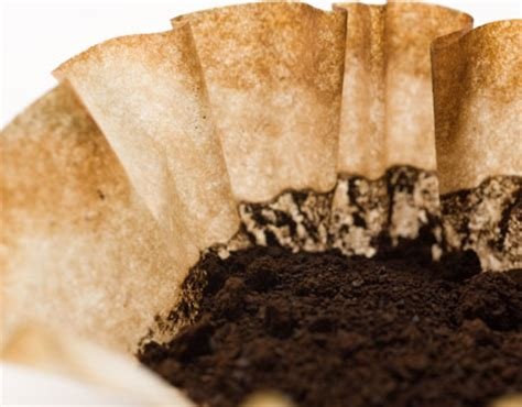 10 Ways to Reuse Coffee Grounds   Top Online Colleges