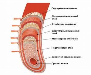 Таблетки от простатита детралекс