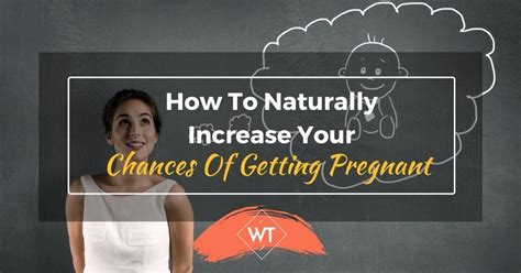 How To Naturally Increase Your Chances Of Getting Pregnant. Affin Bank Personal Loan Top 10 Erp Companies. Online Excel Vba Training E Renters Insurance. Examples Of Tax Evasion Quorum Of The Seventy. Hotels In Myrtle Beach Sc Pet Friendly. Landing Page Creation Software. Phd Programs In Virginia Cruise Tuxedo Rental. Huarong Asset Management Workers Comp Posters. Northvale Public Schools Landing Page Creator