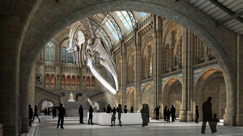 Natural History Museum London  Museums And Galleries