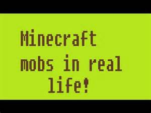 Real Life Minecraft Monsters Mobs