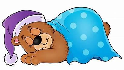 Sleeping Sleep Bear Clipart Cartoon Transparent Dormir