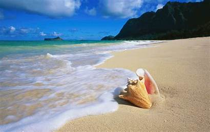 Beach Desktop Mobile
