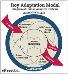 Callista Roy's Adaptation Model