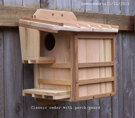 squirrel nest boxes houses feeders and squirrel facts