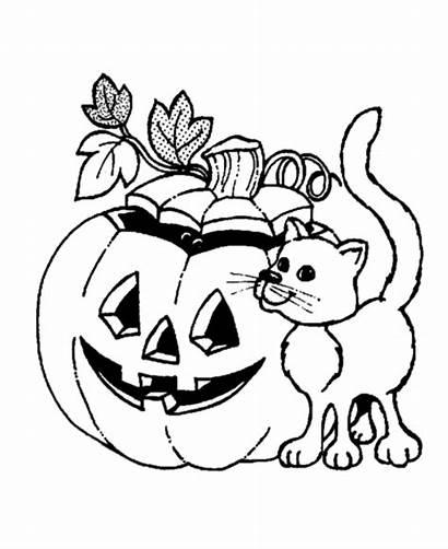 Halloween Coloring Pumpkin Pumpkins Sheets Cat Pages