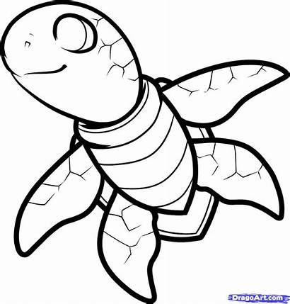 Turtle Sea Draw Step Cartoon Animals Coloring