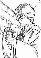 Potter Harry Coloring Potion Polyjuice Pages Netart sketch template