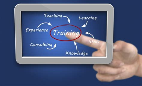 professional education training aaaai