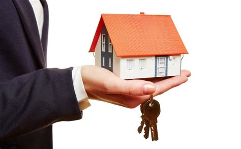 Find Estate Agents Uk Directory Canfield Estate Agents From Milburn