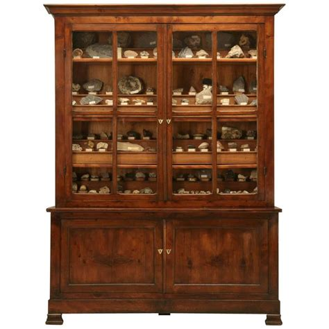 bookcase with storage cabinet french specimen cabinet or bookcase circa 1891 for sale