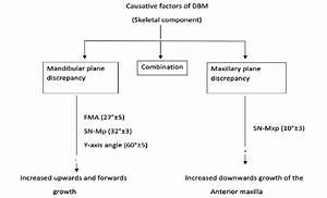 Skeletal Causative Factors Of Deep Bite Malocclusion