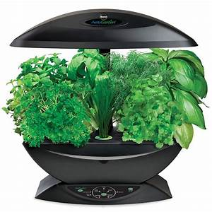 Miracle gro aerogarden with gourmet herb seed kit 99 for Aero garden com