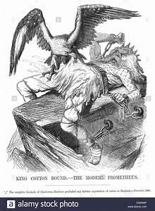 King Of Cotton : king cotton bound the modern prometheus political cartoon ~ Nature-et-papiers.com Idées de Décoration