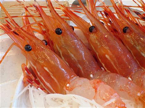 top  worst seafood  eat  healthy sustainable