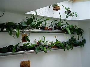 Grand Bac Pour Orchidées : gouttiere d 39 interieur pour fleurs orchidees dans veranda ou loggia les goutti res ~ Melissatoandfro.com Idées de Décoration