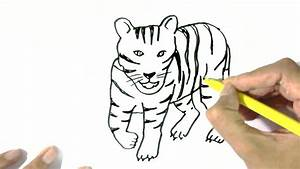 How to draw a Tiger 2 - in easy steps for children ...