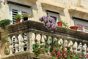 welche pflanzen eignen sich im fruhjahr fur den garten With französischer balkon mit lärmschutz garten günstig und effektiv