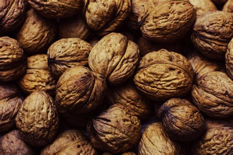 walnuts   jar  stock photo
