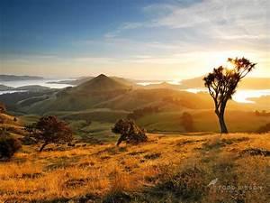 Sunrise Peggy's Hill - Otago Peninsula in 2019 | Famous landscape photographers, New zealand ...
