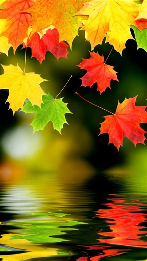 Wallpaper animes phone wallpaper images cool wallpapers for phones scenery wallpaper landscape wallpaper of wallpaper landscape art wallpaper backgrounds aztec wallpaper. Sparkle #128: Fall Wallpapers for your Desktop - Pumpernickel Pixie