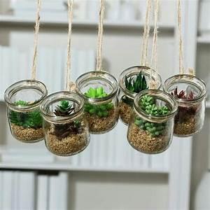 Sukkulenten Im Glas : sukkulente im glas h8cm sukkulenten seidenblumen ~ Watch28wear.com Haus und Dekorationen