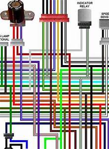 2005 Vtx Wiring Diagram