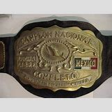 Wwe Championship Belt Randy Orton | 640 x 480 jpeg 75kB