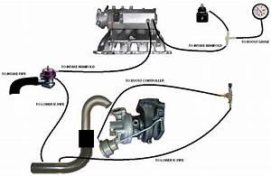 Vacuum Line Routing