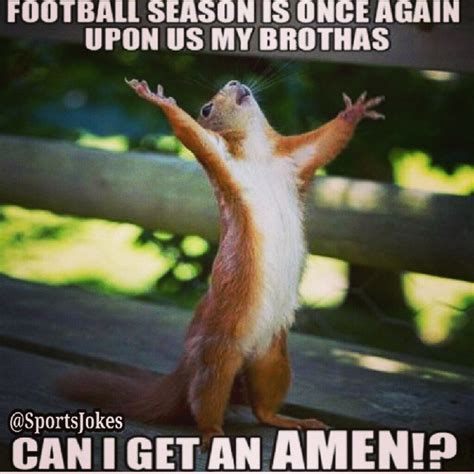 Squirrel Memes - football season squirrel memes just sayin pinterest squirrel memes football season and
