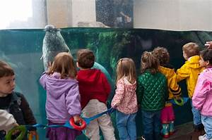 LGBT Family Day at the New England Aquarium   Boston ...  Children